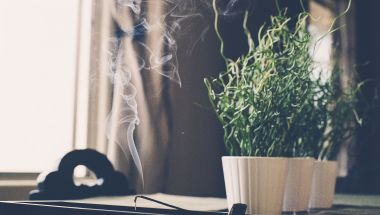 A Beginner's Guide to Japanese Incense Sticks